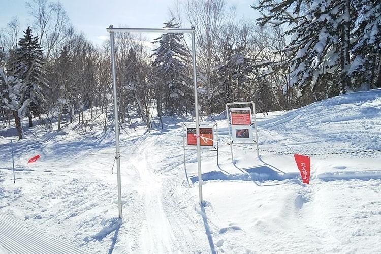 富良野スキー場 リフト券 天気 積雪 バックカントリーコース 口コミ ツアー アクセス