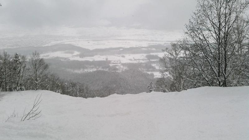 富良野スキー場 リフト券 天気 積雪 バックカントリー コブコース 口コミ ツアー アクセス