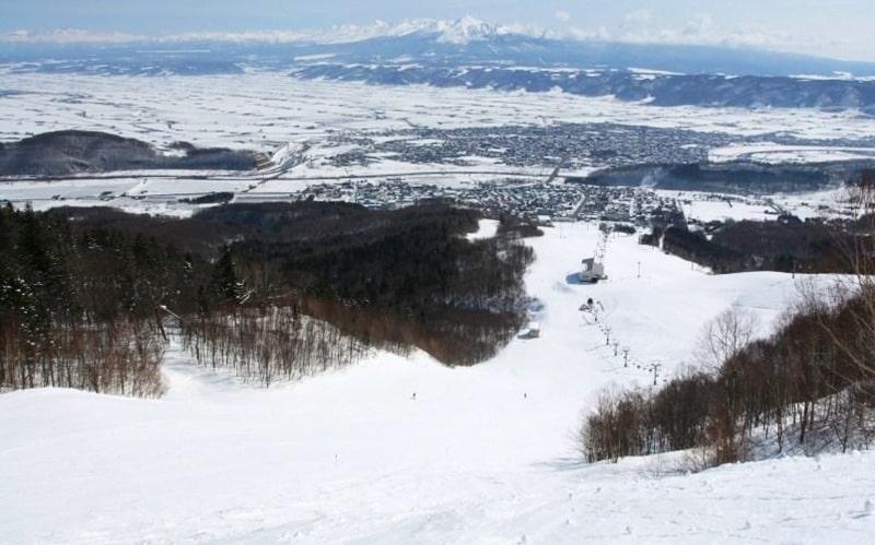 富良野スキー場 リフト券 北の峰 天気 積雪 コース 口コミ