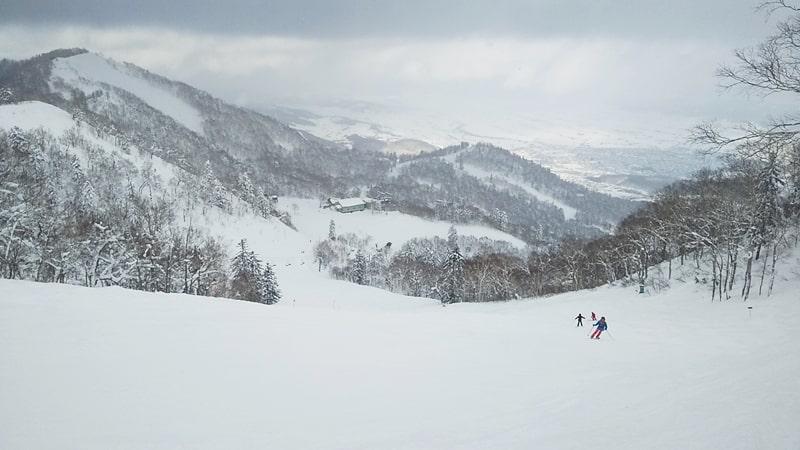 富良野スキー場 リフト券 天気 積雪 パノラマコース 口コミ